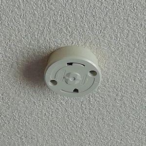 天井シーリングの交換(京都市北区)